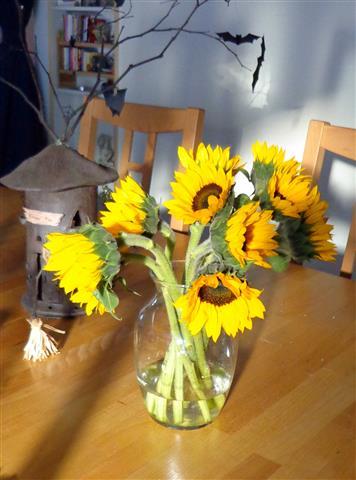 Gift of sunshine